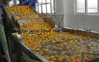 pl9843416-6000l_h_orange_fruit_juice_processing_machine_with_fresh_fruits_treatments